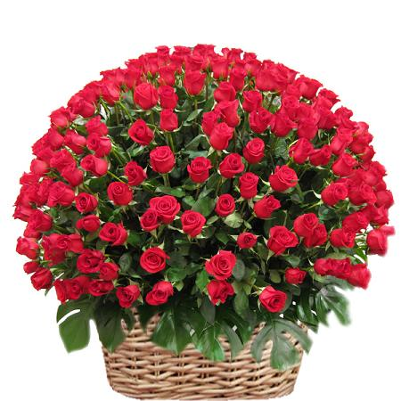 send flowers  online flowers shop  florist in mumbai, Beautiful flower